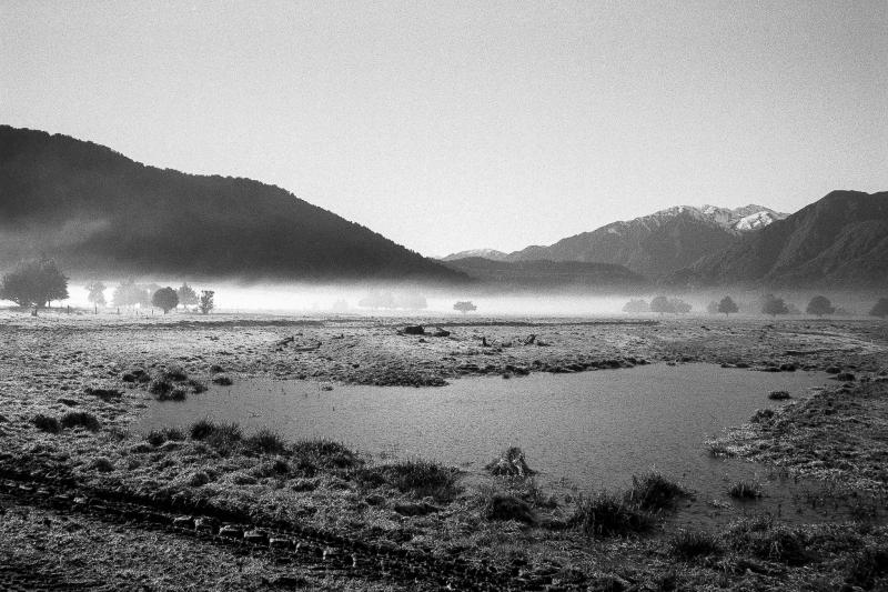 NZpond_PaulaSmithPhotography