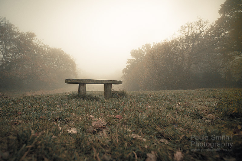 Foggy_Bench_PaulaSmithPhotography