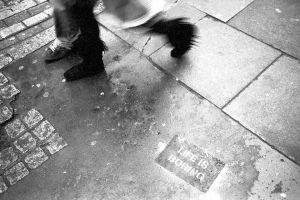 Life is Boring pavement