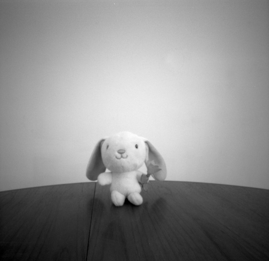 Still life with Ondu Multiformat Pinhole 6x6, Ilford PanF+ EI800