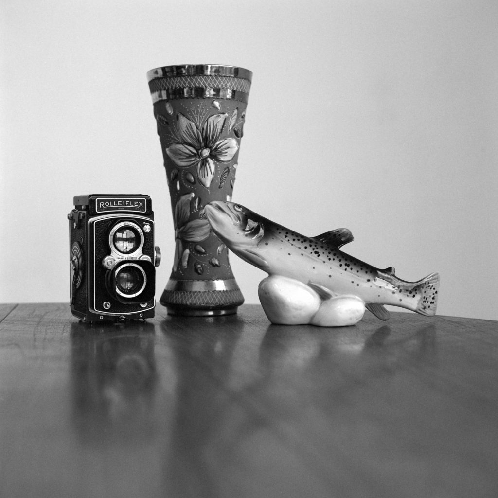 Still life taken with Bronica SQAi and 80mm lens withing Ilford PanF+