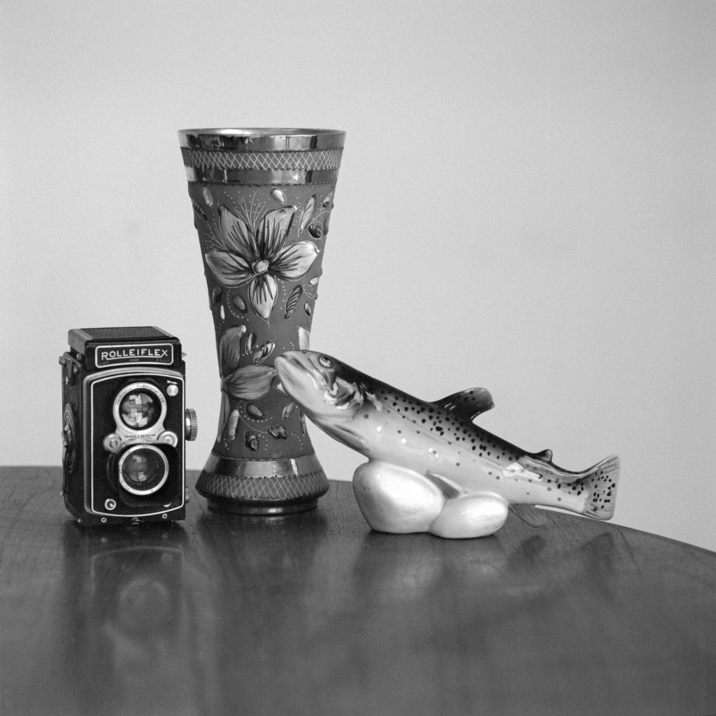 Still life taken with Bronica SQAi and 150mm lens using Ilford PanF+ rated at 800