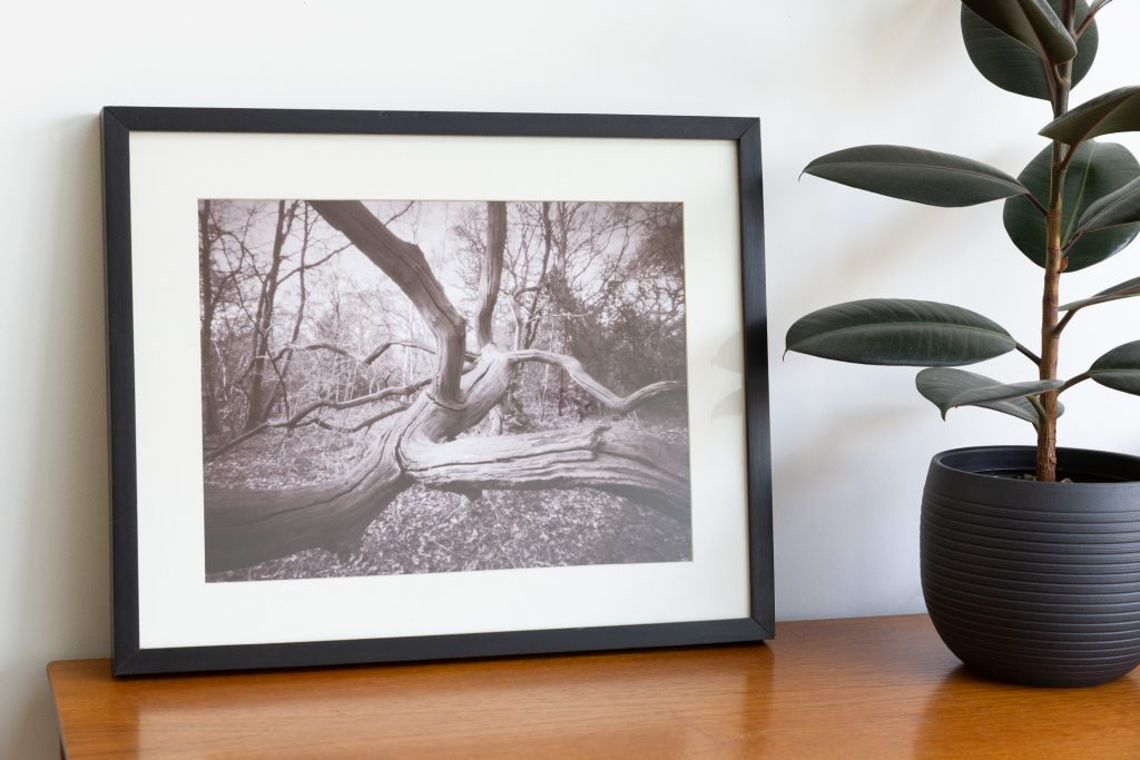 Pinhole print mounted and framed and displayed on a teak sideboard.